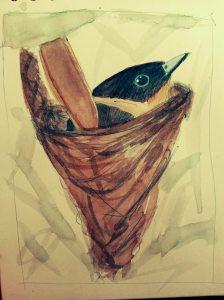 Madaskars Vogelwelt 2