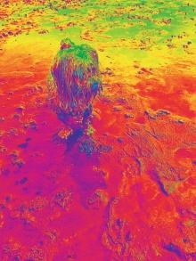 20160727_132932_Hagrid_Infrared